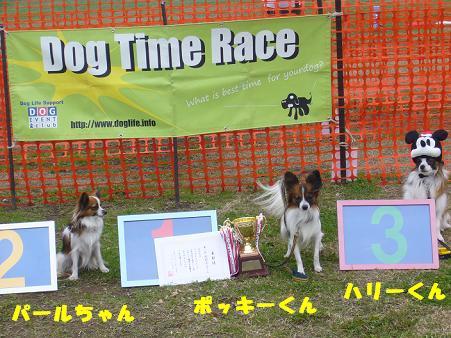 小型犬限定戦表彰式