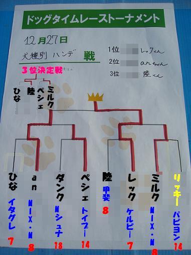 犬種別ハンデ戦トーナメント表