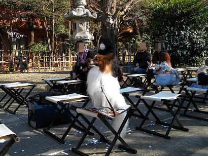 亀岡八幡宮3