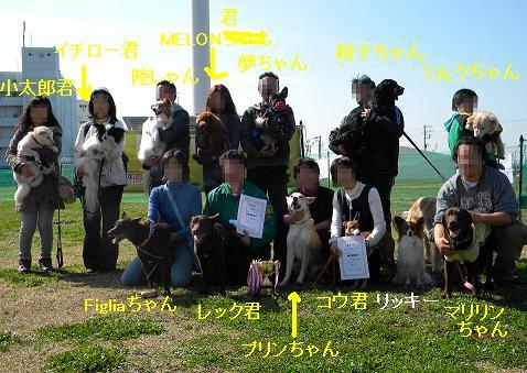 犬種別ハンデ戦集合写真