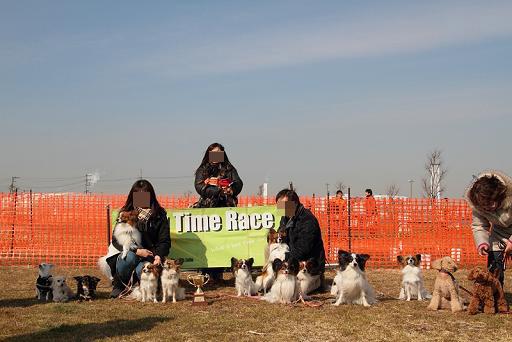 小型犬集合写真0129