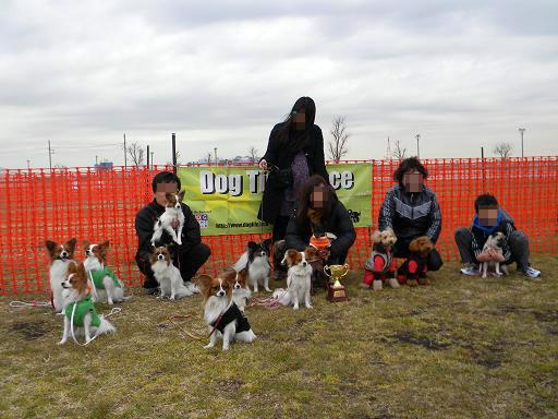 小型犬集合