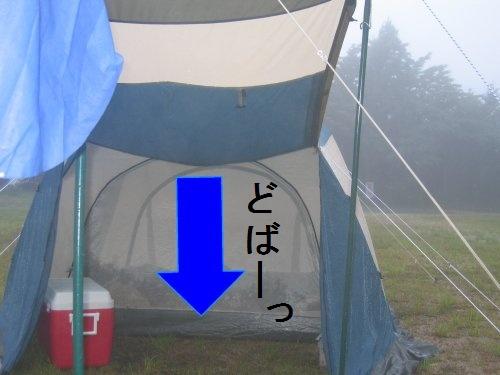 image1079693.jpg