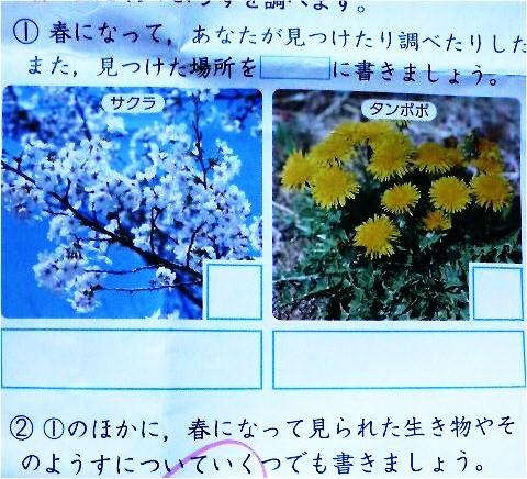 image6821419.jpg