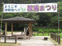 新居浜市 菖蒲祭り
