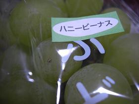 CIMG8152.jpg