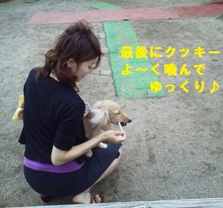 NEC_0029_20110801090012.jpg