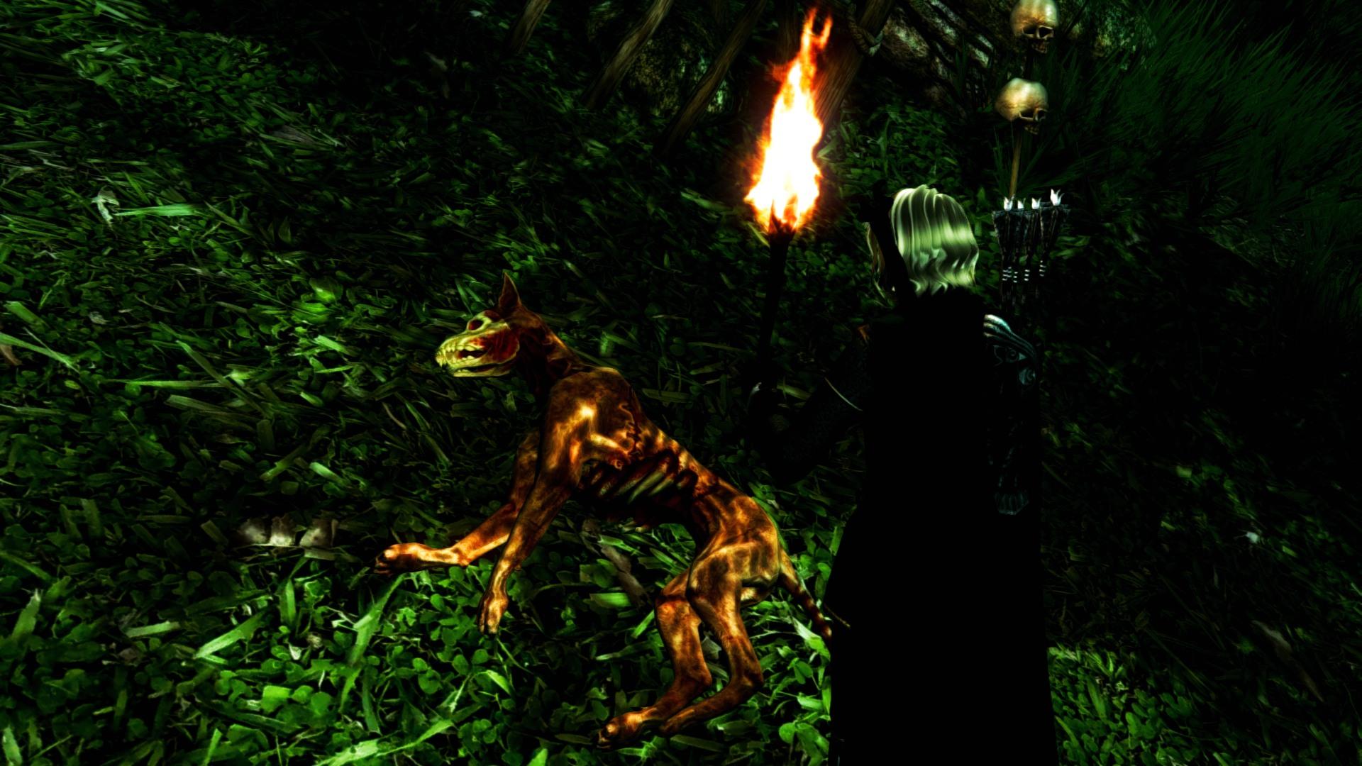 Oblivion 2012-01-02 16-52-46-71