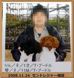 2008112420091206.jpg