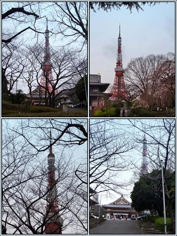 800東京タワー