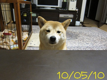 100510 1
