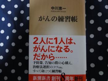 gho1_convert_20110501201243.jpg
