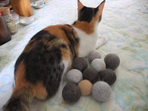 毛玉ボールとスモモ