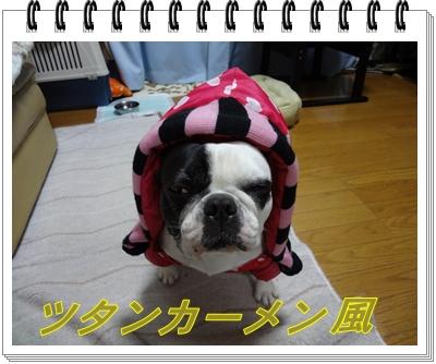 DSC00296_20111113233630.jpg
