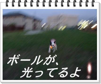 RIMG10166.jpg