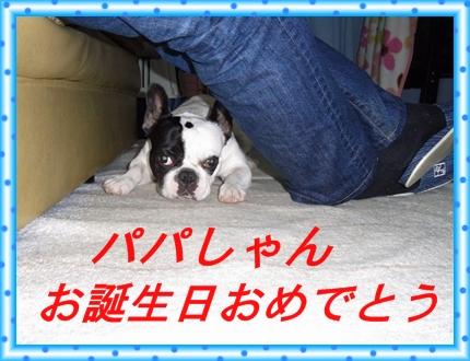 RIMG10669.jpg