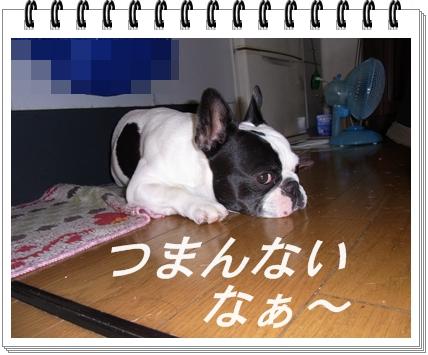 RIMG10738.jpg