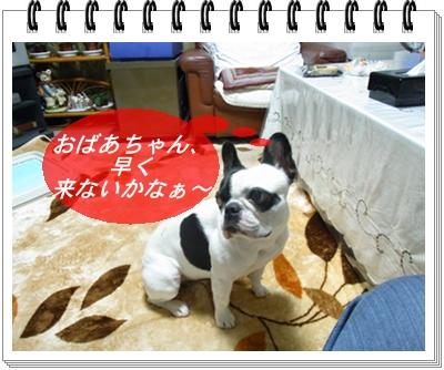 RIMG10896.jpg