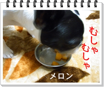 RIMG10903.jpg