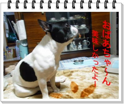 RIMG10910_20110629153843.jpg