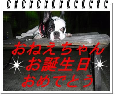 RIMG11014.jpg