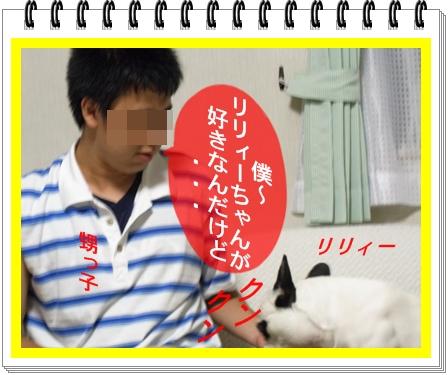 RIMG11190.jpg
