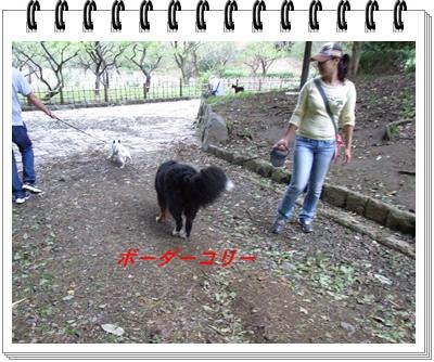 RIMG11607.jpg