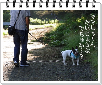RIMG11622.jpg
