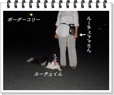 RIMG12038.jpg