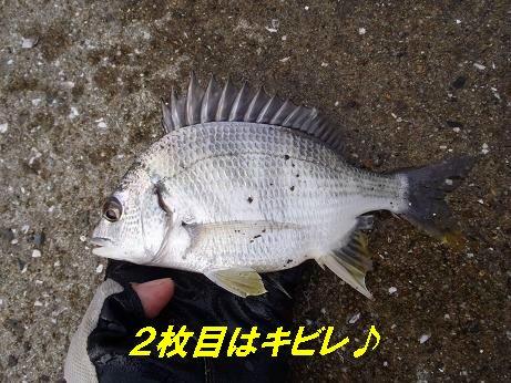 20110807_5