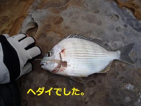 20110911_8
