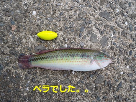 20110917_6