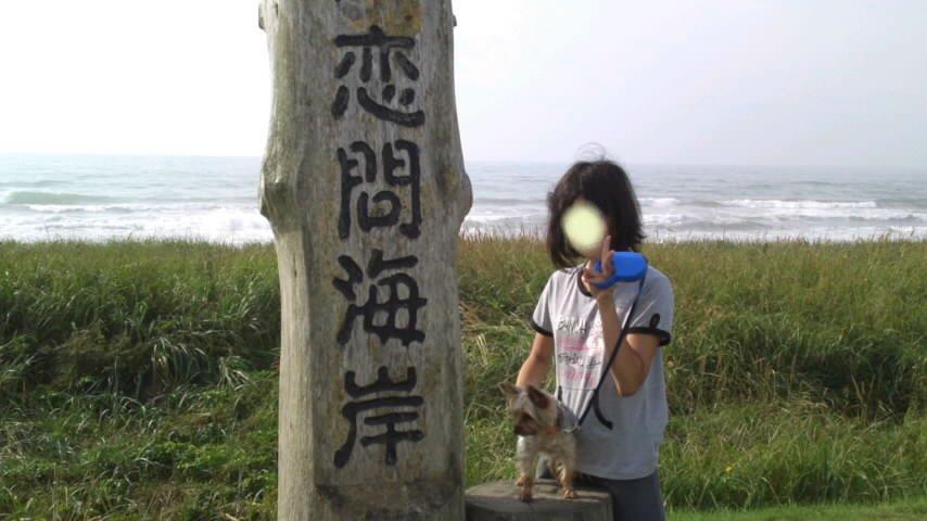 2011 秋3-1