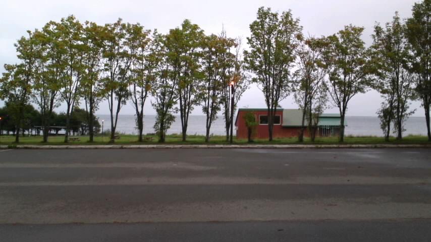 2011 秋15
