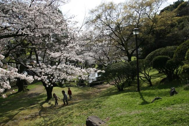 kumamotojoIMG_1943.jpg