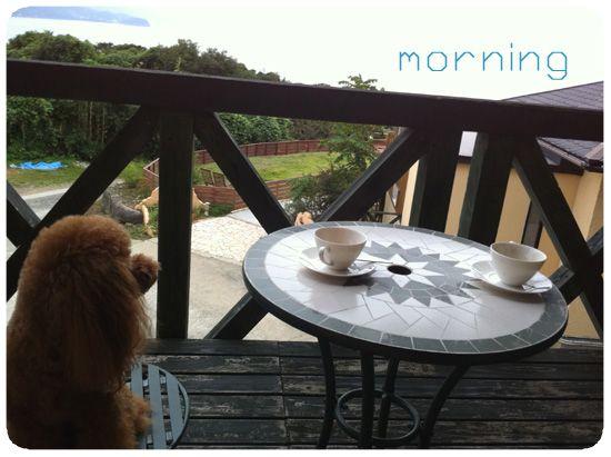 morning01.jpg