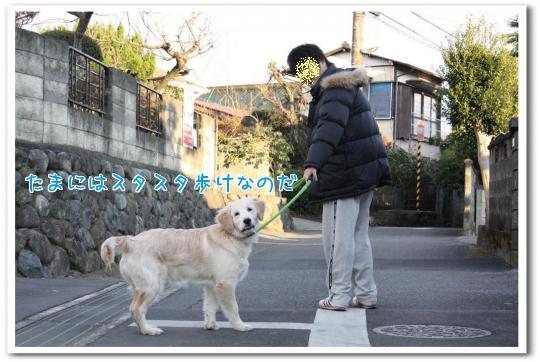 4ReI2.jpg