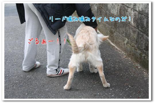 MyDaG.jpg