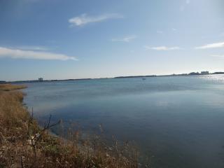 12月浜名湖2