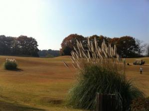 Golf-1_convert_20101129082234.jpg