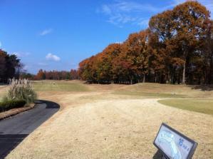 Golf-2_convert_20101129082251.jpg