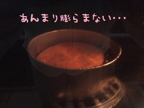 DSC_00260.jpg