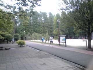20110611001.jpg