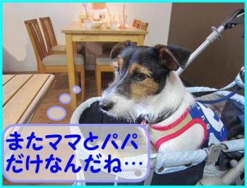 20110813006001.jpg