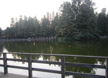 20111010001.jpg