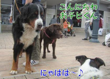 20111113006.jpg