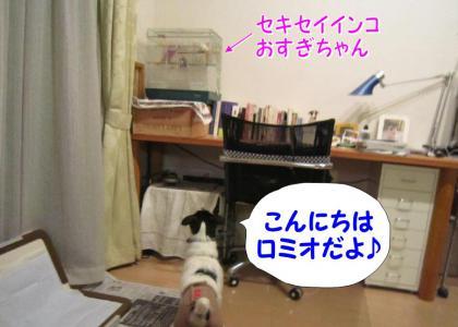 20120324005.jpg