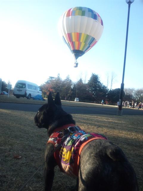 気球とルーさん