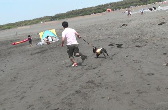 カズニーと海岸ダッシュ!!