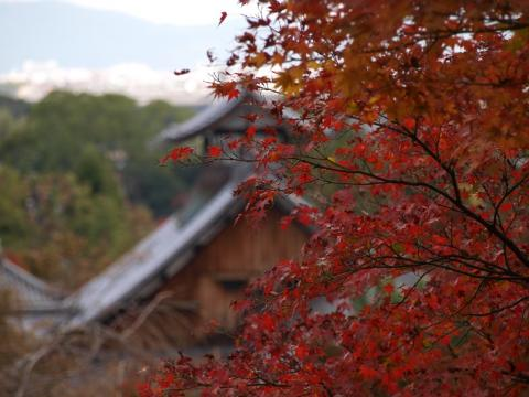 2009-10-11-17 088-4